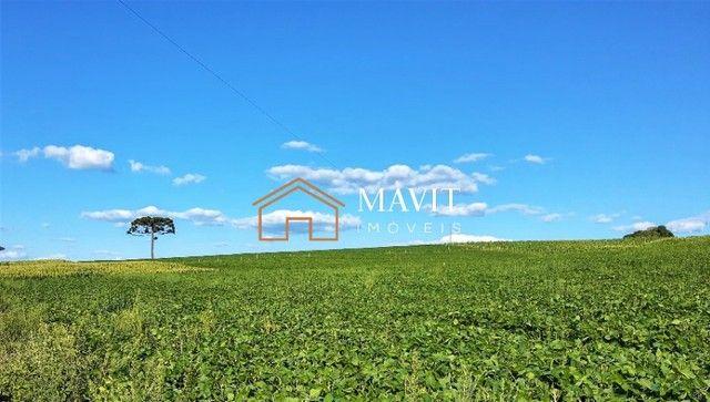Terreno Rural 25 hectares com Casa e Galpão em Capão Alto SC - Foto 5