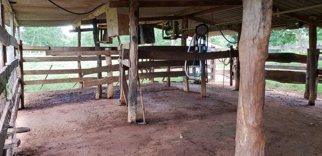 Chácara 30 ha - R$ 430.000,00 - Foto 3