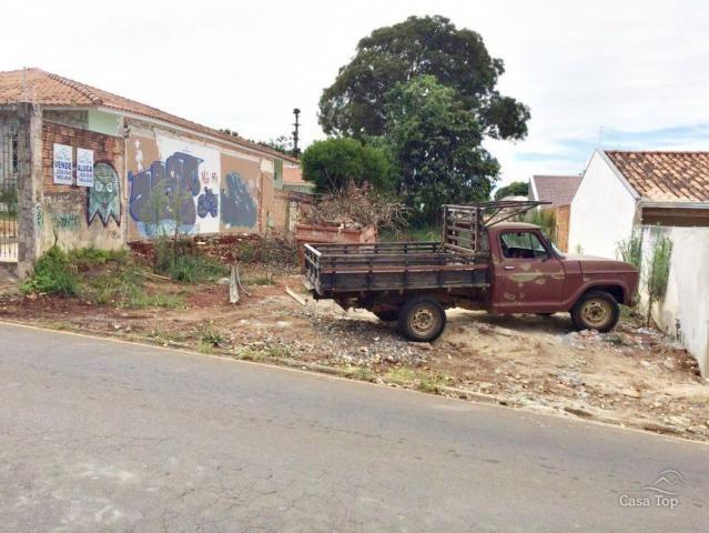 Terreno para alugar em Uvaranas, Ponta grossa cod:256 - Foto 2