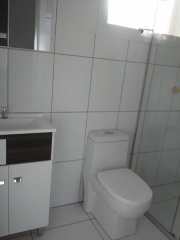Apartamento para alugar com 3 dormitórios em Sagrada familia, Caxias do sul cod:11298 - Foto 8