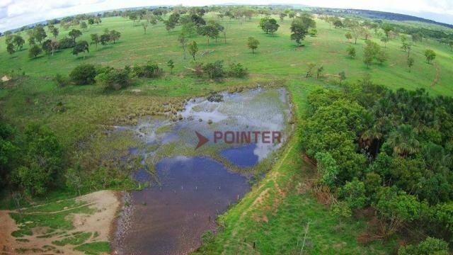 Fazenda à venda, 5614400 m² por R$ 15.000.000,00 - Zona Rural - Cachoeira Alta/GO - Foto 9