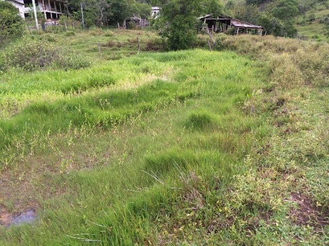 Sítio em Santo Antônio da Patrulha/RS com 7Ha com Arroio e Açude. Peça o Vídeo Aéreo - Foto 7