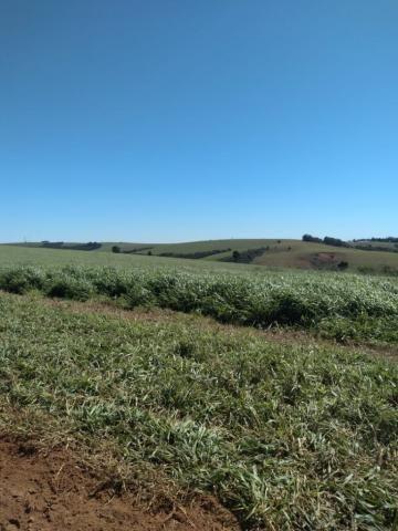 Fazenda à venda entre Itabera e Taquarituba/SP - Foto 12
