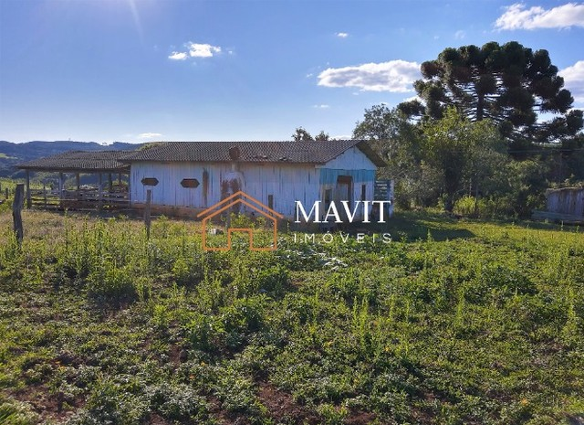 Terreno Rural 25 hectares com Casa e Galpão em Capão Alto SC - Foto 11