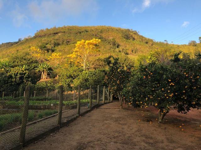Linda Chácara na Montanhas Capixabas, com uma extensa área de hortas e pomares, com um lin - Foto 9