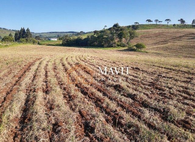 Terreno Rural 25 hectares com Casa e Galpão em Capão Alto SC - Foto 19