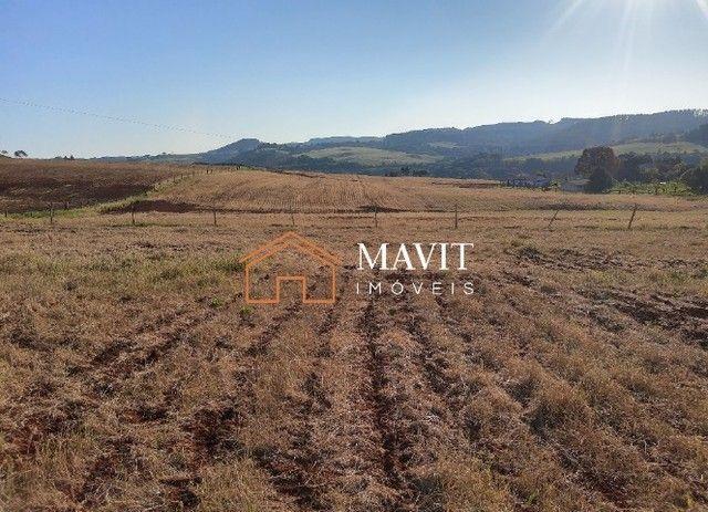Terreno Rural 25 hectares com Casa e Galpão em Capão Alto SC - Foto 9