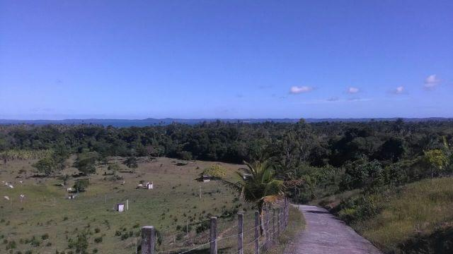 Espetacular fazenda, Salinas das Margaridas Bahia - Foto 14