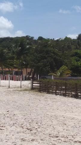 Vende-se excelente terreno em Barra de Catuama , a 200m da praia - Foto 14