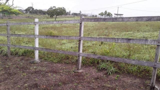 Fazenda para venda em feira nova, feira nova - Foto 9