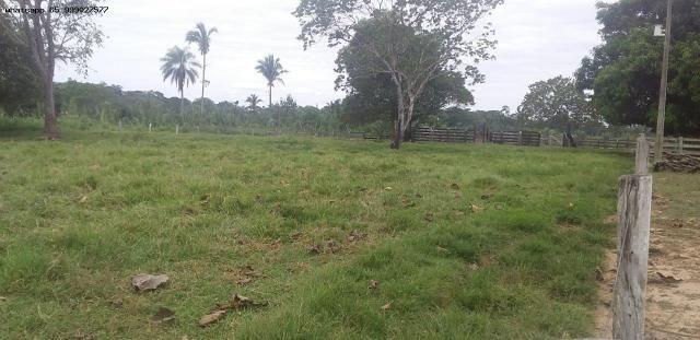 Sítio para Venda em Tangará da Serra, Assentamento Antonio Conselheiro, 3 dormitórios, 1 b - Foto 4