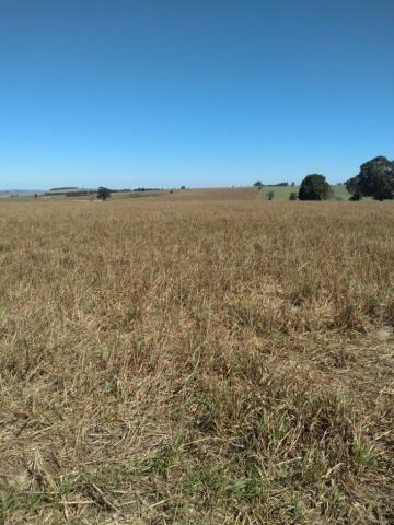 Fazenda à venda entre Itabera e Taquarituba/SP - Foto 4