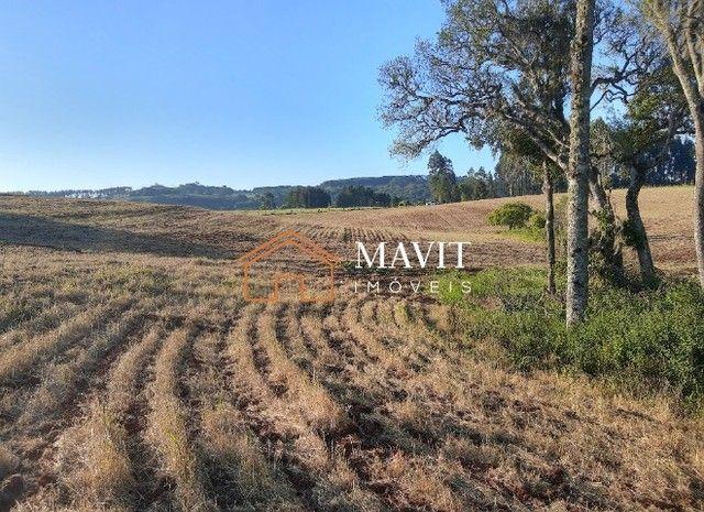 Terreno Rural 25 hectares com Casa e Galpão em Capão Alto SC - Foto 15