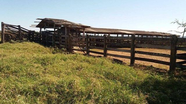 Fazenda em Santa Cruz de Goiás - GO - Foto 8
