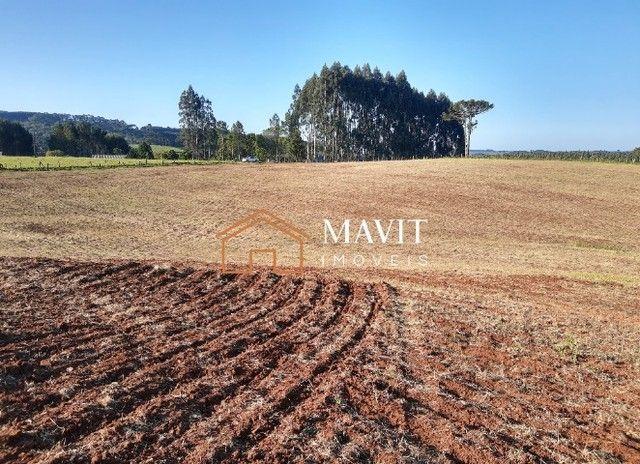 Terreno Rural 25 hectares com Casa e Galpão em Capão Alto SC - Foto 14