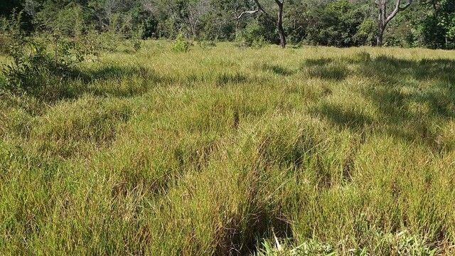 Fazenda em Santa Cruz de Goiás - GO - Foto 3