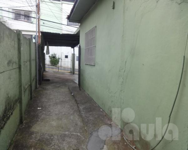 Vila gerty - terreno urbano com 260m2 - próximo aos comércios locais