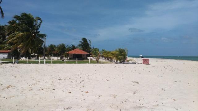 Vende-se excelente terreno em Barra de Catuama , a 200m da praia - Foto 20