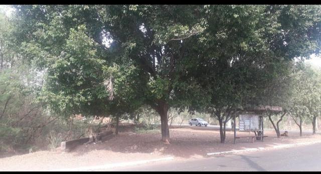 Vendo terreno de 1.000 m² no bairro Mapim - Várzea Grande