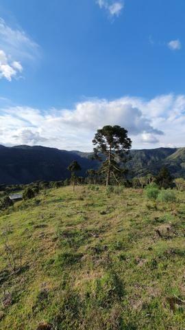Sítio em Urubici/ área rural/ chácara em Urubici com - Foto 5