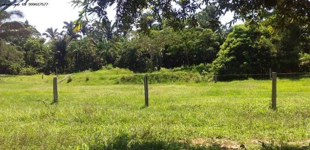 Sítio para Venda em Tangará da Serra, Assentamento Antonio Conselheiro, 3 dormitórios, 1 b - Foto 9