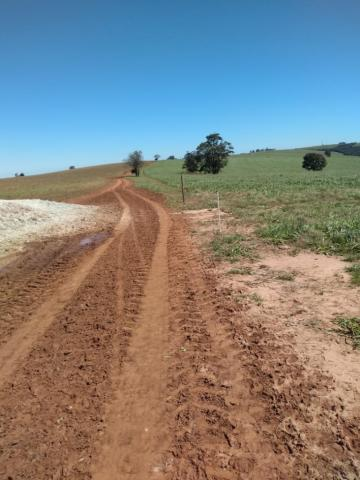 Fazenda à venda entre Itabera e Taquarituba/SP - Foto 14