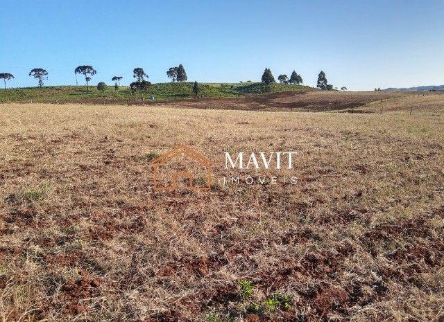 Terreno Rural 25 hectares com Casa e Galpão em Capão Alto SC - Foto 17