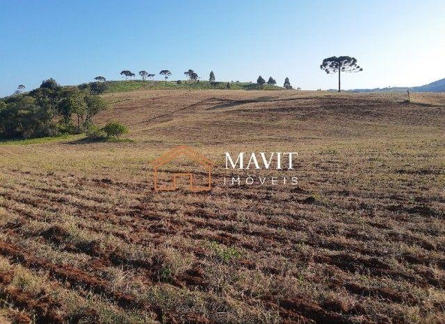 Terreno Rural 25 hectares com Casa e Galpão em Capão Alto SC - Foto 18