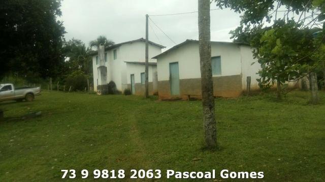 Fazenda a venda Bahia - Foto 4