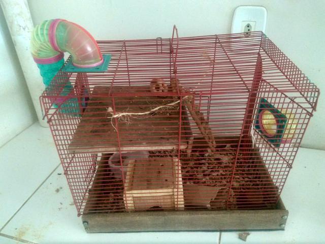 Duas gaiolas para roedores.