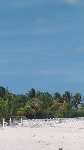 Vende-se excelente terreno em Barra de Catuama , a 200m da praia - Foto 13