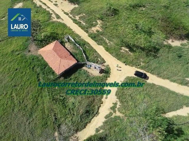 Fazenda Ipanema com 20 Alqueires em Pedra Azul-MG - Foto 15