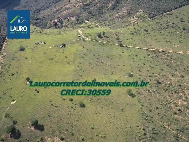 Fazenda Ipanema com 20 Alqueires em Pedra Azul-MG - Foto 7