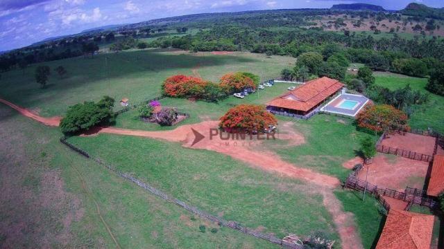 Fazenda à venda, 5614400 m² por R$ 15.000.000,00 - Zona Rural - Cachoeira Alta/GO - Foto 6
