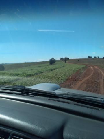 Fazenda à venda entre Itabera e Taquarituba/SP - Foto 19