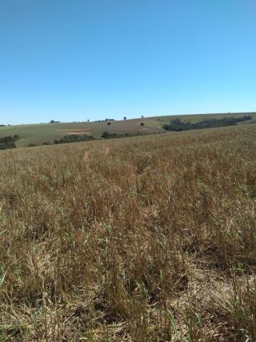 Fazenda à venda entre Itabera e Taquarituba/SP - Foto 2