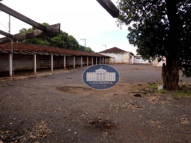 Prédio, 3000 m² - venda por R$ 2.500 o m² ou aluguel por R$ 50.000/mês - Centro - Araçatub - Foto 9