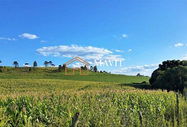 Terreno Rural 25 hectares com Casa e Galpão em Capão Alto SC
