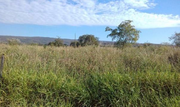 Raridade Fazendinha plana com agua por gravidade E Rio Perene/Agricultura ou Pecuaria