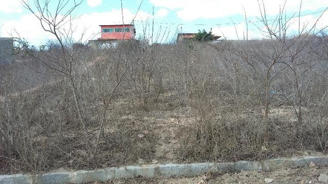 Um terreno no Loteamento Fazenda Riacho do Mel - Foto 3