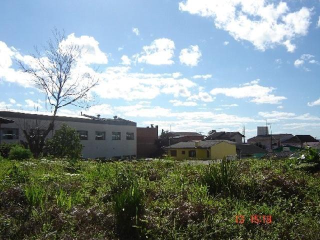 Terreno para alugar em , cod:I-022070 - Foto 2
