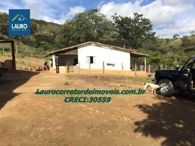 Fazenda Ipanema com 20 Alqueires em Pedra Azul-MG - Foto 11