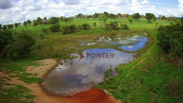 Fazenda à venda, 5614400 m² por R$ 15.000.000,00 - Zona Rural - Cachoeira Alta/GO - Foto 4