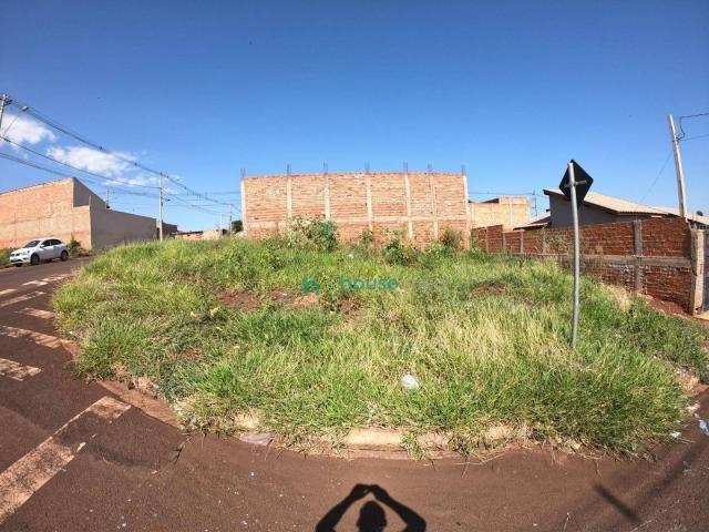 Terreno à venda, 205 m² por R$ 80.000,00 - Recanto dos pássaros III - Ourinhos/SP - Foto 2
