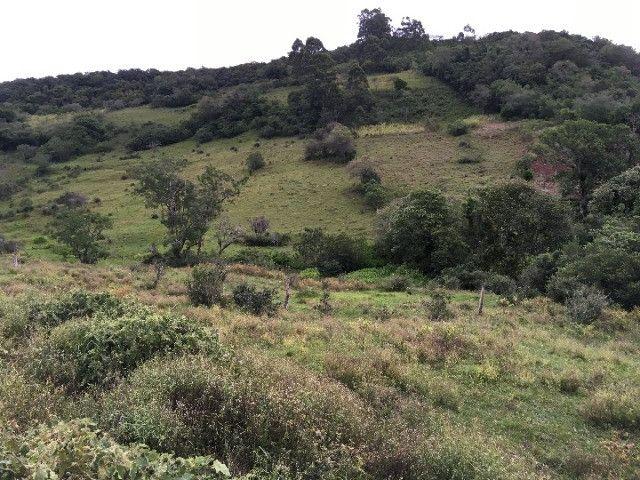 Sítio em Santo Antônio da Patrulha/RS com 7Ha com Arroio e Açude. Peça o Vídeo Aéreo - Foto 10
