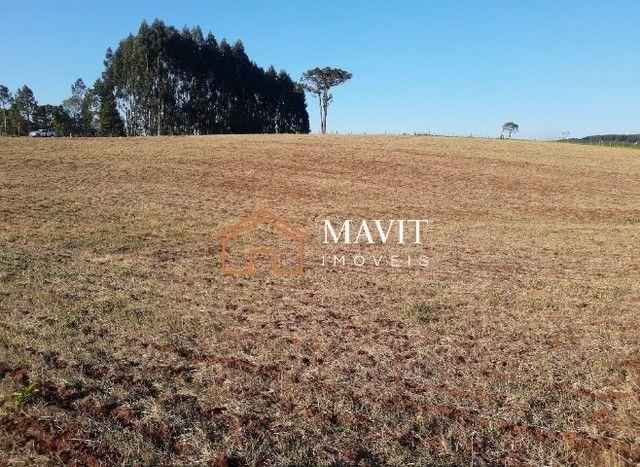Terreno Rural 25 hectares com Casa e Galpão em Capão Alto SC - Foto 20