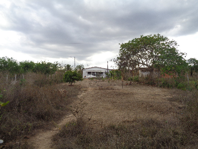 Casa no sítio  - Foto 6