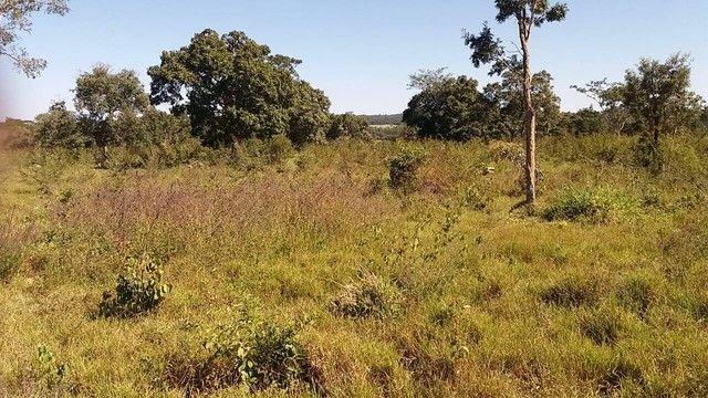 Fazenda em Santa Cruz de Goiás - GO - Foto 2