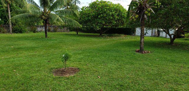 Natureza e Praia Casa Confortável Ilha de Itaparica - Foto 13