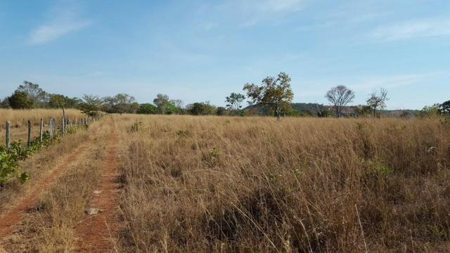 Fazenda com 355 ha na saída para Paraíso - Foto 9